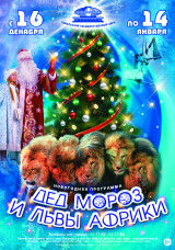 Дед Мороз и львы Африки