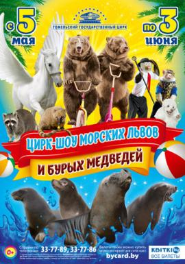Цирк-шоу морских львов и бурых медведей